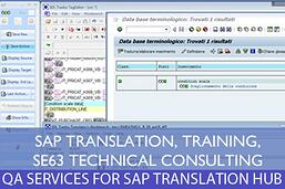 SAP TRANSLATION1.jpg