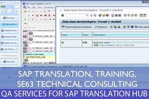 SAP TRANSLATION1.jpg